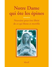Notre-Dame qui ôte les épines - Neuvaine pour être libéré de ce qui blesse et mortifie